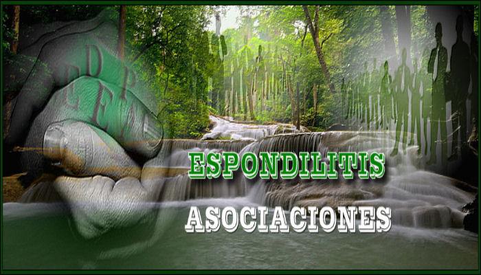 asociaciones_espon